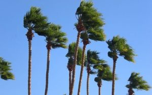 gusting winds